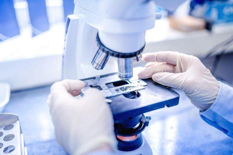 Sample Collection – Histopathology